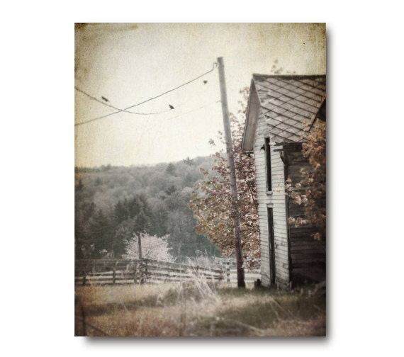 Landscape Art Farm Photo, antique, abandoned barn, brown, decay, country, rural, grey, birds on a wire, rustic, spooky