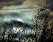 BOGO SALE- Wolf Moon 8 x 8 full moon photograph, tree silhouette, night sky, teal, rust, amber, charcoal, silver, clouds, mystical