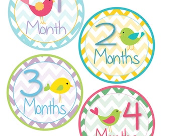 Monthly Bodysuit Stickers - Birds and Chevrons - For a baby girl 1-12 months -  Perfect Gift for Mom to Be