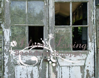 NEW ITEM 5ft x 7ft Vinyl Photography Backdrop / White Peeling Abandoned Door