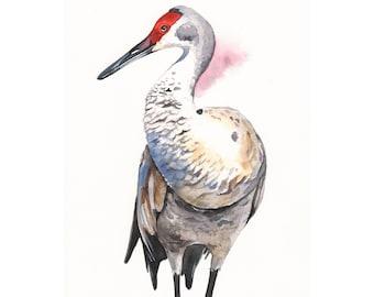 Crane Painting - wildlife bird art- print of watercolor painting 5 by 7 print wall art print - bird art print