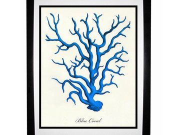 Blue Coral Vintage Style Nautical Art Print Beach House Decor