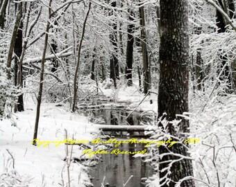 Snowy Stream - Virgina