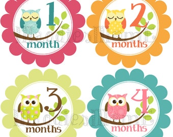 Monthly Baby Girl Stickers Baby Month Stickers, Monthly Bodysuit Sticker, Monthly Stickers Owls Pink Orange (Scarlette)