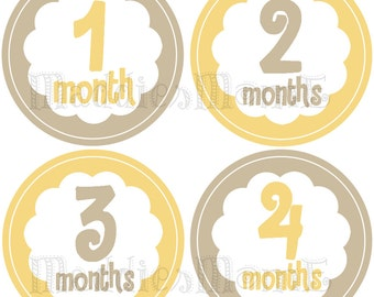Monthly Baby Stickers Girl Milestone Stickers Baby Girl Month Stickers Monthly Bodysuit Sticker Monthly Stickers Yellow (Flowers Gray)