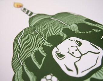 Grumpy Birthday Tortoise Blank Greeting Card