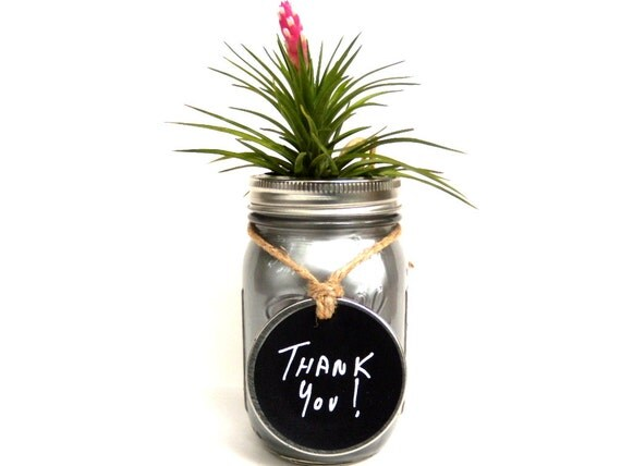 Metallic Silver Glass Jar with Air Plant and Chalkboard Tag PERFECT Thank You Gift or Silver Anniversary Gift