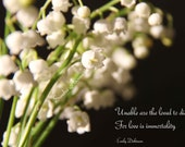 SALE 40% off Lily of the Valley Sympathy Card with Dickinson quote / Choice of photo cards with text