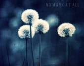 Royal Blue Dandelions Photo Wishes Child Summer Dreams - NoMarkAtAll