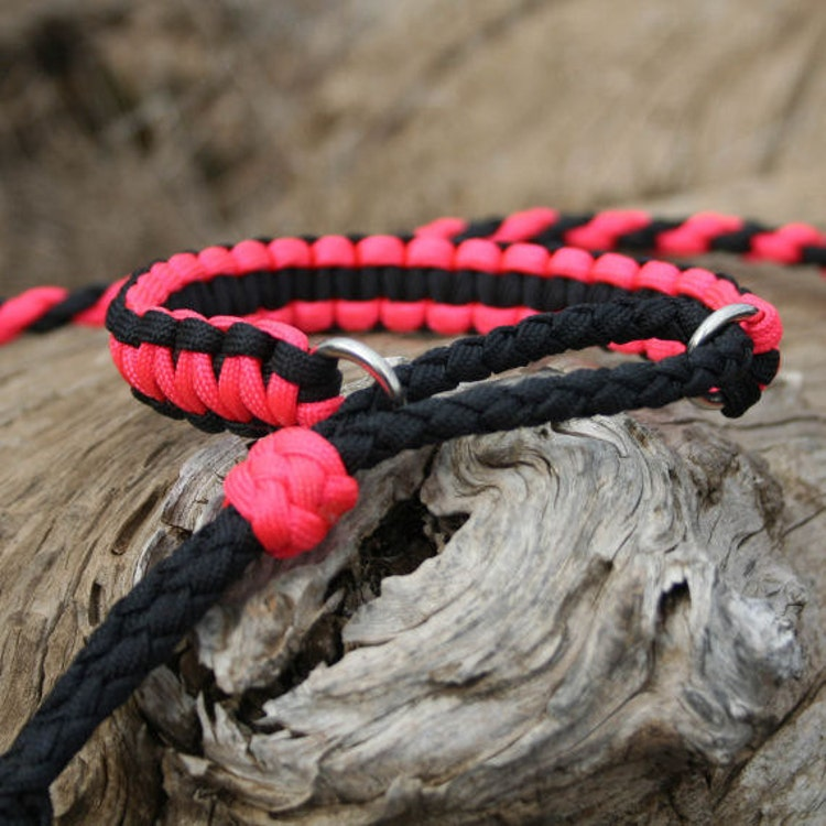 Paracord Dog Collar Reviews