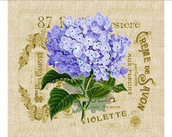 Purple hortensia hydrangea flower French ephemera instant digital download image for transfer to fabric burlap paper pillows cards No. 615