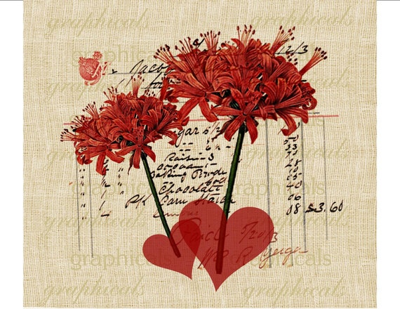 Chocolate ephemera red flowers heart Instant Digital download graphic image for decoupage Iron on fabric transfer burlap pillow No. 466
