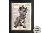 The Royal French Bulldog with Crown - Printed on Beautiful Vintage Dictionary Paper - 8x10.5