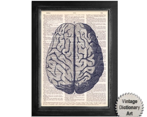 The Brain in Blue & Grey - Anatomy Print on Vintage Dictionary Paper - 8x10.5 - Medical Diagram Dictionary Art Print