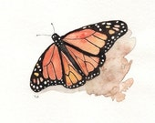 Monarch Butterfly/orange, yellow,brown, black  Watercolor Print - kellybermudez