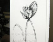 """CARD, Fine Art, """"Poppy Study 4"""" Kylie Fogarty, Poppy Pods,  Black and White Drawing, Minimalist Card, Congratulations Card"""
