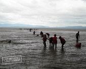 Bath Time in a Rain Storm, African Landscape,  Lake Langano Ethiopia, Rainy Season 8x12 Landscape