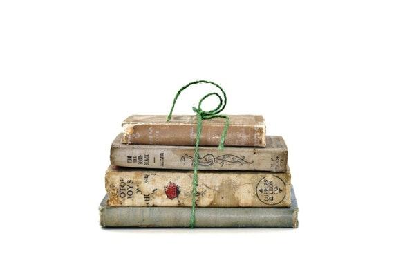 Shabby Chic 4 Book Collection Home Vintage Book Decor