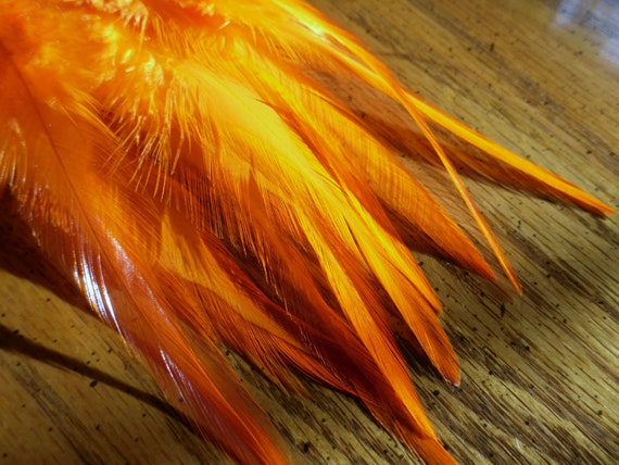 Orange Feathers for Holiday Crafts, Wholesale Feathers, Qty 12