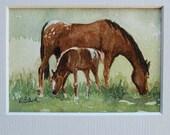 watercolor ORIGINAL Appaloosa 3 horse pony foal ACEO watercolour