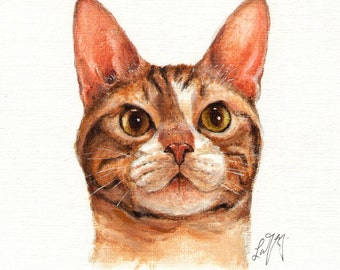 Original Oil CAT Portrait Painting AMERICAN WIREHAIR Art On Canvas Kitten Signed