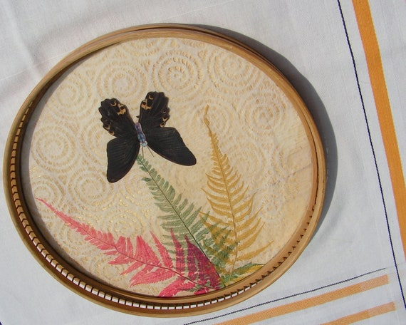 Late 60's early 70's Bamboo Tray with Black Butterfly and ferns Underglass