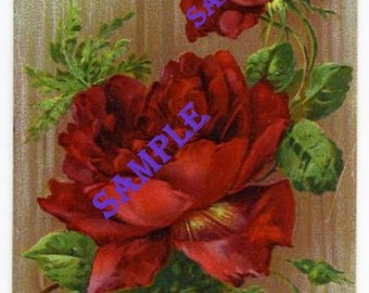 Digital Download-Best Wishes-Vintage Postcard