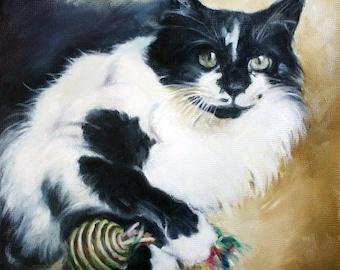 Custom Pet Portraits, Oil Painting, Pet Portrait, Portrait Commission, Animal Portrait, 8x8, Cat Portrait