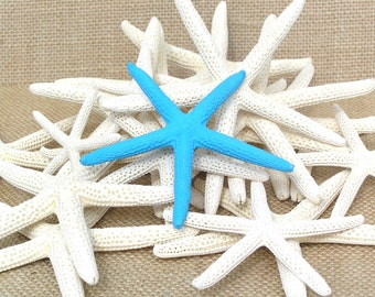 Starfish, Finger Starfish, Painted Starfish, Wedding Supplies, Colored Starfish (ANY color) 12 pcs. 3 - 4 inch Finger Starfish
