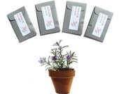 Aromatherapy Rosemary Sage Scented Sachets Garden Party Event Favors Seed Envelopes Packets Grey or Other Color Custom Label Herb Home Decor