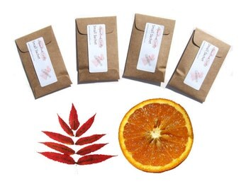 Personalized Fall Wedding Favors Cranberry Orange Scented Sachets Seed Packet Favors Kraft or Pick Color Autumn Hostess Gift Home Decoration