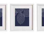 Leaf Prints Navy Wall Art Print Set of Three Original Modern Botanical Leaves 11x14 - ColorJar