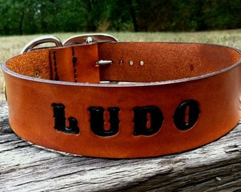 """1 3/4"""" Wide Leather Dog Collar Custom Stamped Handmade Dog Collar with Riveted Brass Information Tag"""