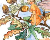 ACEO Limited Edition 2/25- The Acorn fairy inspired by CM Barker