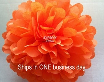 Orange Tissue Paper Pom Pom - 1 Medium Pom - 1 Piece - Ships within ONE Business Day - Tissue Poms - Tissue Pom Poms - Choose Your Colors!
