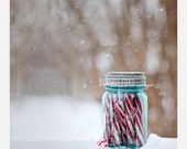 Christmas Candy Cane Holiday Photograph, red white stripes sugar peppermint still life decor winter snow blue mason jar whimsical Fpoe - BitsofLifeImages