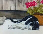 Lazy Kitty Watercolor Print Notecard Set