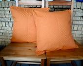 FREE SHIPPING: Set of 2 Burnt Orange Pumpkin 18 x 18 pillow covers