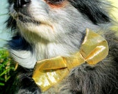 "Dogs' and Cats' Bow Tie Made to Order - Dazzling Gold with Black & White ""Paw Print"" Neck Strap"