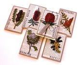 Handpainted Linoprint Greeting Cards - Australian Native Flower Collection - Pack of 6