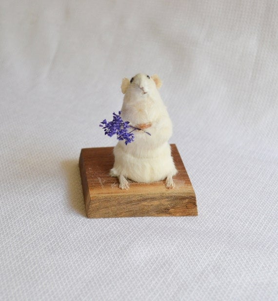 Taxidermy mouse with flowers.