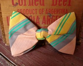 Butterfly Bow Tie, Striped Butterfly Clip Bow Tie, Retro Mens Accessory