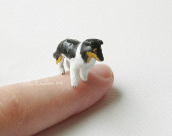 Miniature tricolor Collie dog, Polymer clay sculpture, Made to order