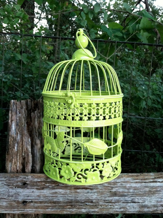Lime Green French Hanging Bird Cage / Cottage Chic Round Bird Cage