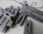 industrial gray clothespins-