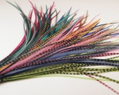 Long Feather Extensions, Hair Feathers Extensions Your Choice Of Colors 7 to 10 inches 5  long feathers your choice of grizzly, or solids