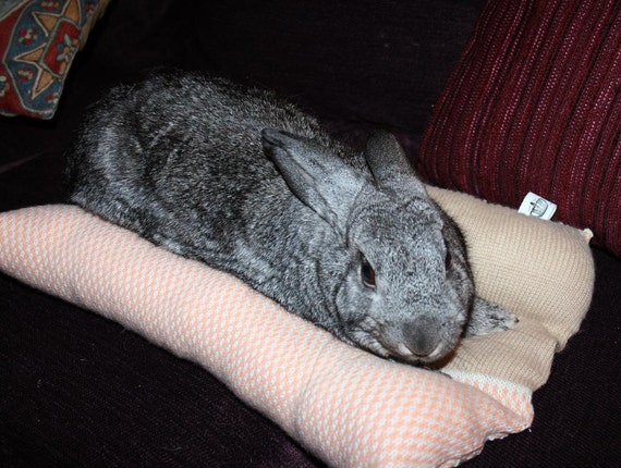 Bunny Hugger side by side bunny bed for a medium sized rabbit