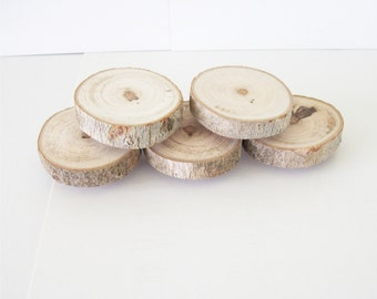 5 Maple Wood Magnets Rustic Tree Branch Home Decor