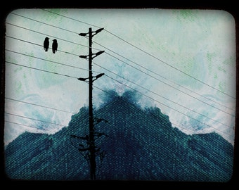 Birds on a Wire - 5 x 7 Matted Print