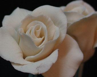 Elegant White Gumpaste Sugar Rose Bud   Half open